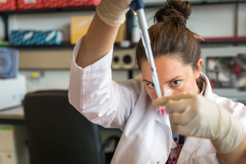 Summer Undergraduate Research (SUR) Programme | UNICA Summer